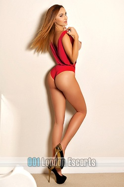London Escort Girl Sloane Avenue SW3 Brown